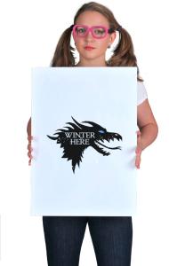 Постер Зима пришла