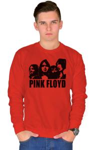 Свитшот Пинк Флойд 4 | Pink Floyd 4