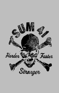 Постер  Sum 41   Sum 41 Pieces Harder Faster Stronger black