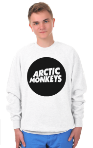 Свитшот Логотип Арктик Манкис Logotype Arctic Monkeys