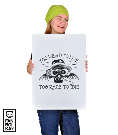 Постер Страх и Ненависть | Fear and Loating