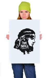 Постер Тэйм Импала Девушка | Tame Impala Girl